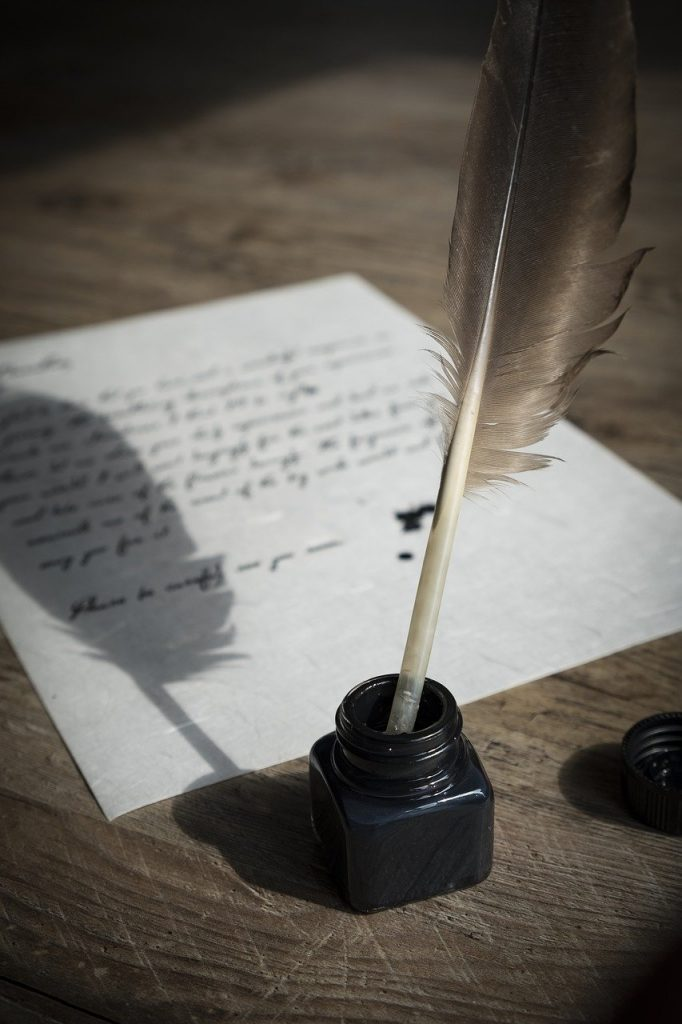 bird feather, feather, paper
